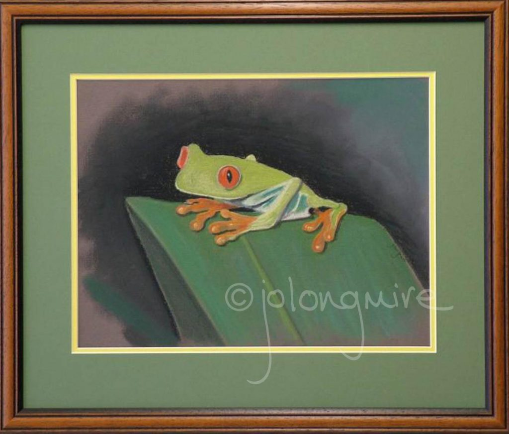 Tree Frog framed
