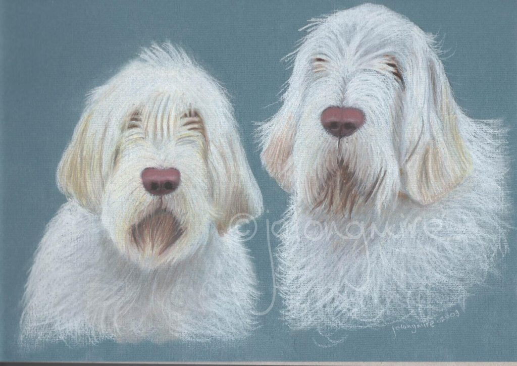 Jean's Dogs